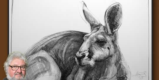 Portrait of Kangaroo 44 by Michael Chorney