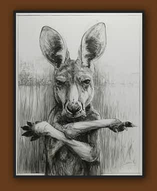 Drawing of Kangaroo No. 31