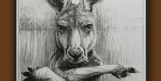 Portrait of kangaroo No.31b