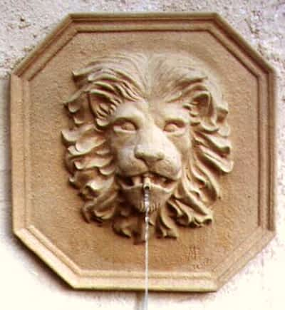 Web Lion Head