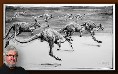Drawing of Kangaroo No. 54